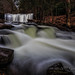 Ricketts Glen State Park by GFletch -- persistently behind :)