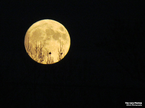 Nov 13 2016 - Just another Super Moon shot from our front door