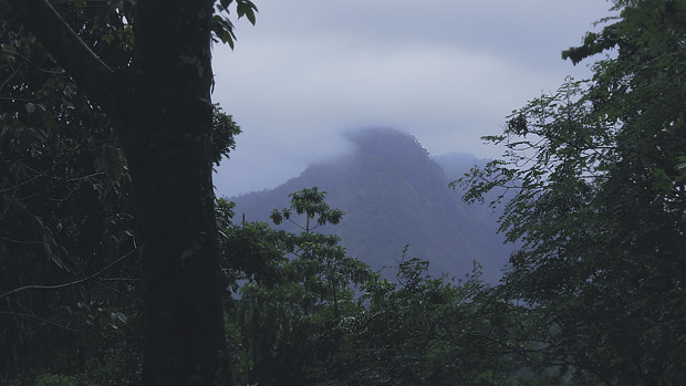 misty hills in Sri Lanka