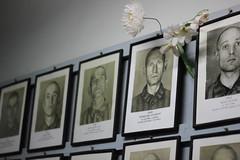 Faces in Auschwitz