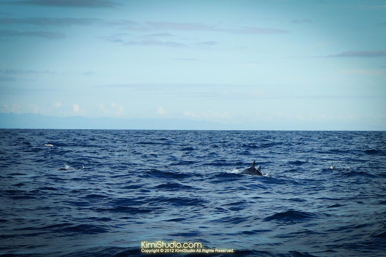 2012.04.17 Philippines Cebu Bohol-019