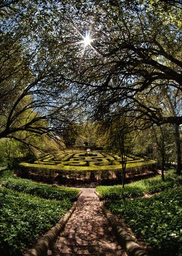 shadows path fisheye maze colonialwilliamsburg hdr williamsburgva sunflare governorspalace rokinon8mm