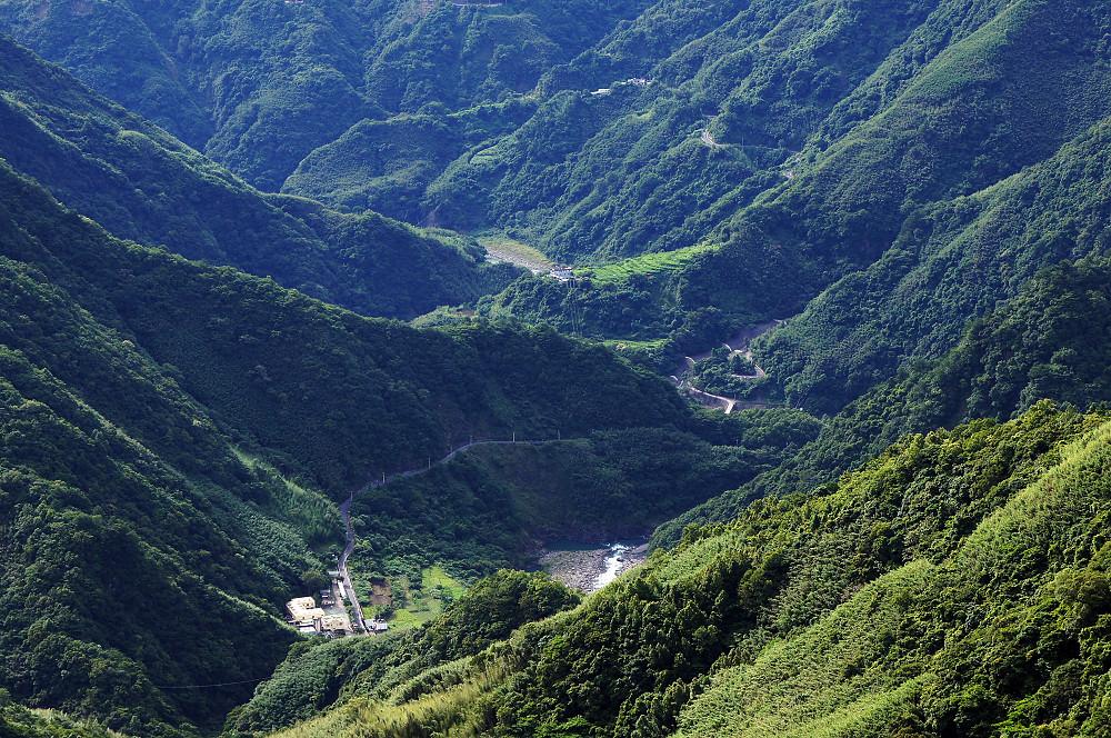 巨木群,與往拉拉山的路上-005
