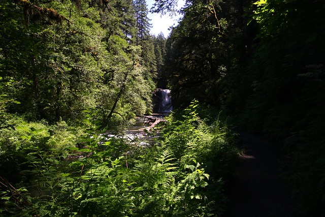 Upper North Falls, Silver Falls