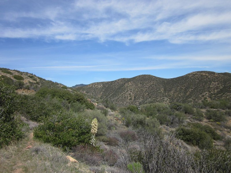PCT San Felipe Hills - The trail winds deeply inland