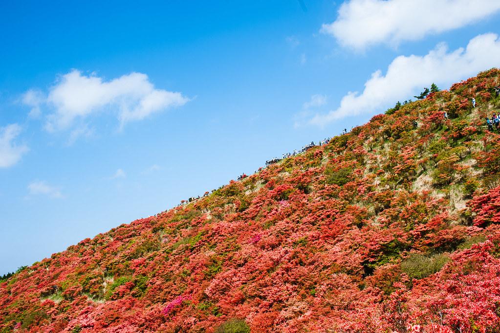 Mt. Katsuragi