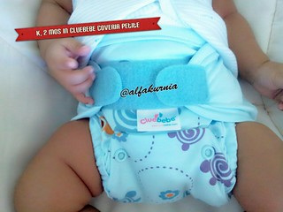 CDW Day 2: Cluebebe coveria petite