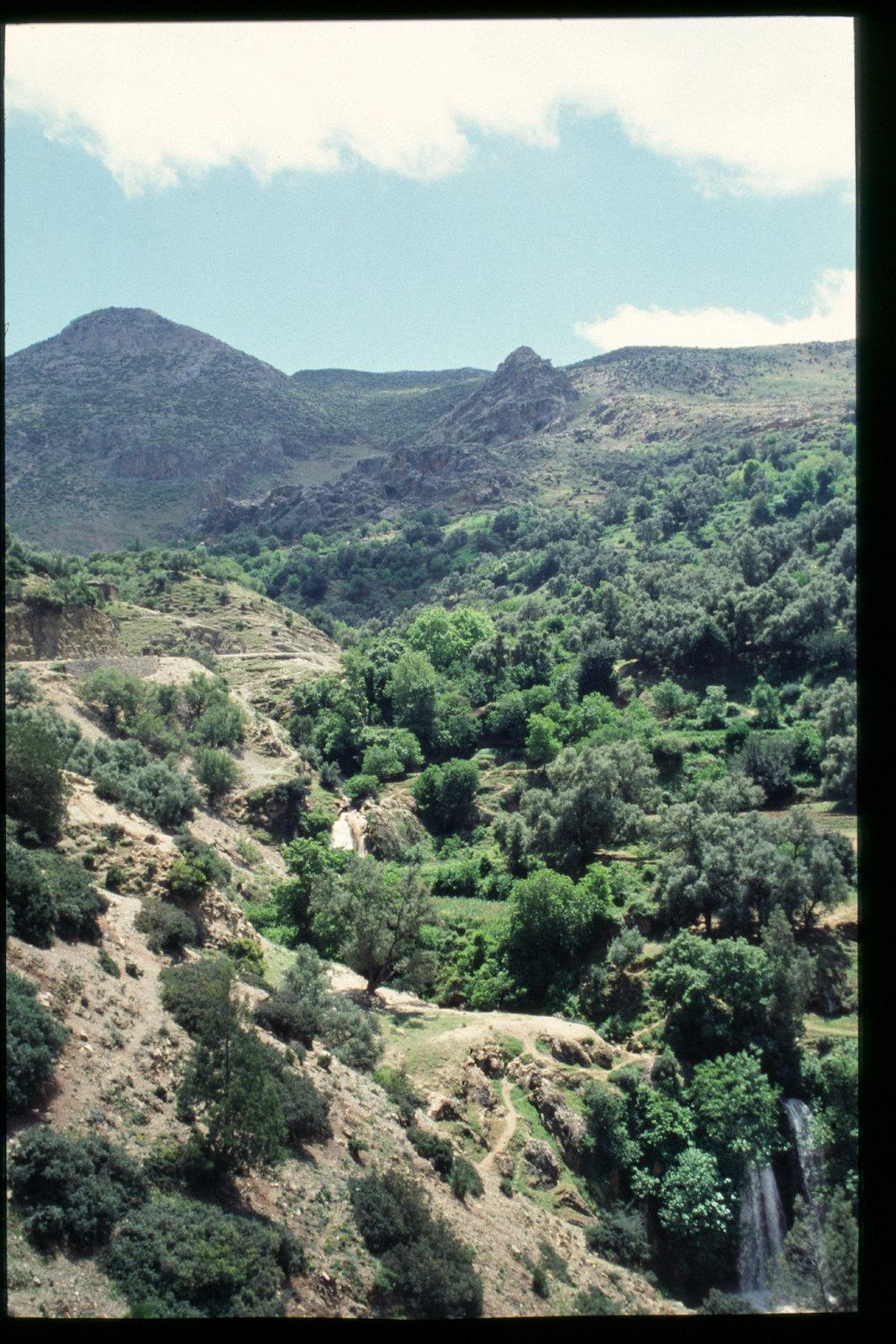 Maroc oriental - Dans le parc national du Tazekka