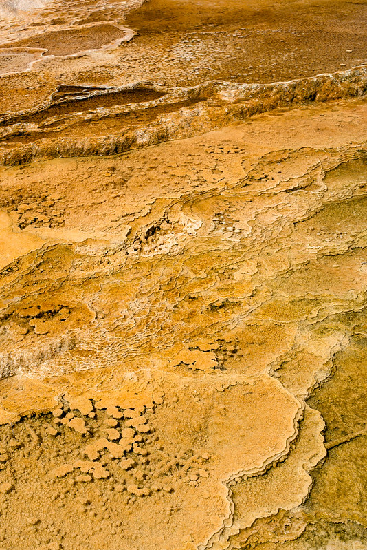 Yellowstone Abstract-7