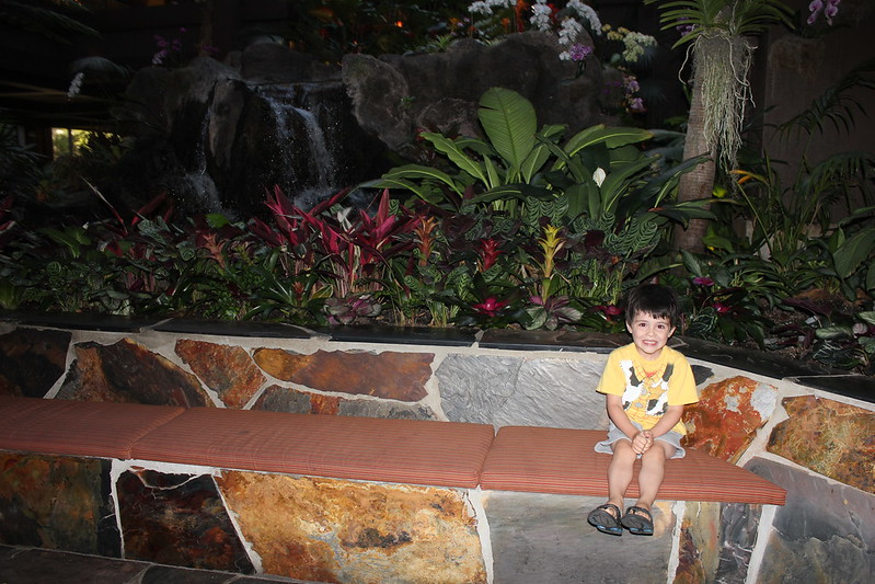 Luke in the lobby of Disney's Polynesian Resort