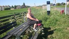 hoog gras bank wilsveen 002