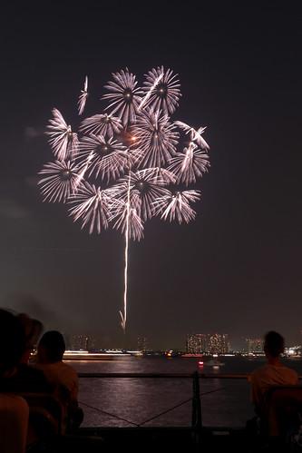 「昇朴付 芯入 群光千輪」 by 山内宏 東京湾大華火 2013 Tokyo Bay Grand Fireworks