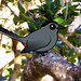 Birdorable Gray Catbird