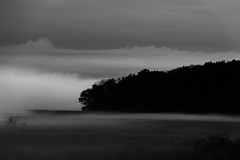 Dark and Foggy_46047_.jpg by Mully410 * Images