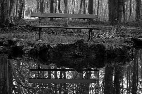 Bois de Vincennes 17 01 2015_19