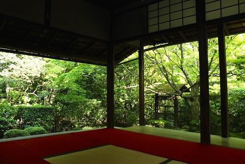 妙心寺 桂春院(2015.5.22)