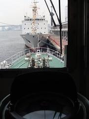 東京湾船舶祭 - naniyuutorimannen - 您说什么!