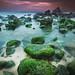 Stone bubbles by alonsodr