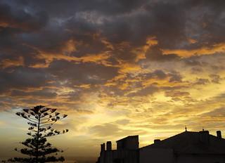 Alger-2010-12-19-02