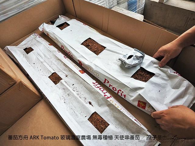 番茄方舟 ARK Tomato 玻璃溫室農場 無毒種植 天使串番茄 18