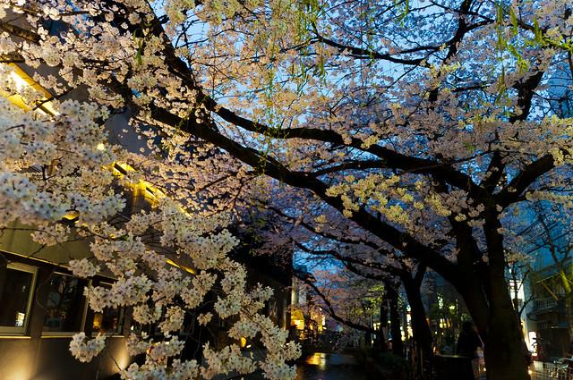 京都木屋町通り