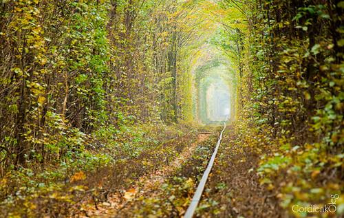 tunnel5