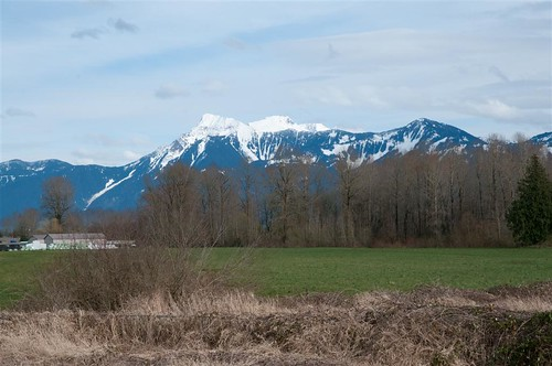 chilliwack island22 cheammountain