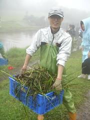 志工政諭正提著裝滿著一整籃的外來種植物去堆肥 吳岱芝攝