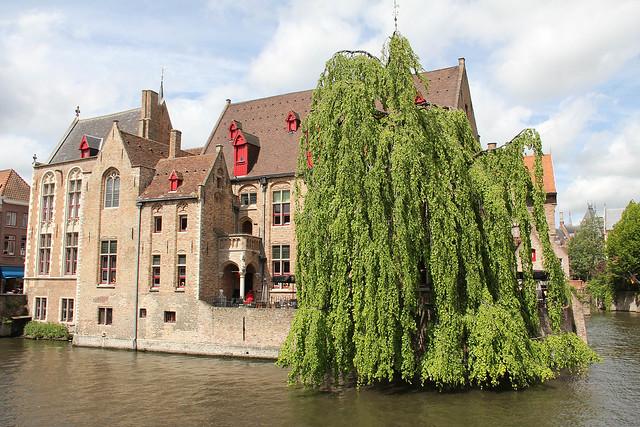 Belgium 557