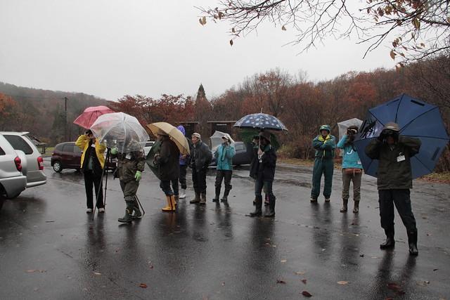 自然館前の駐車場に出ると激しい雨…