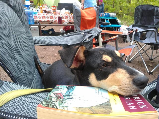 Bishop is good at camping.