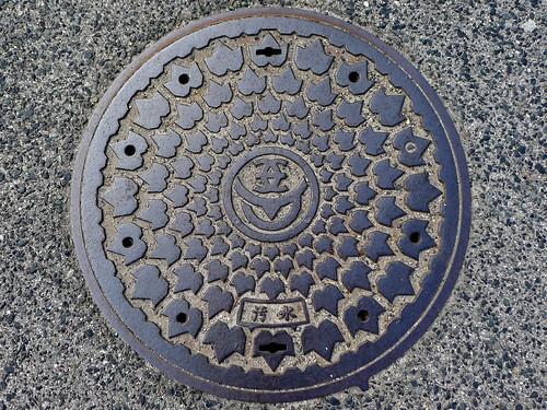 Kasaoka city Okayama pref, manhole cover 2 (岡山県笠岡市のマンホール2)