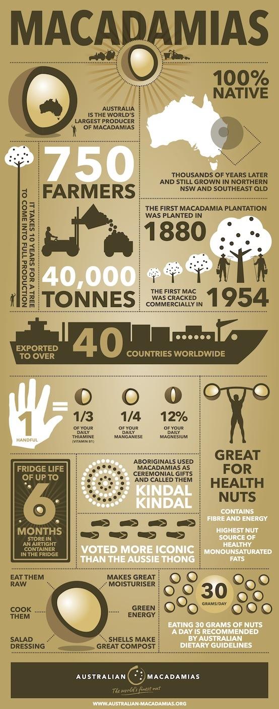 Australian Macadamias - Infographic