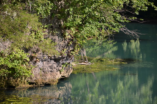 statepark reflection landscape outdoors scenic turtles missouri ozarks stateparks hahatonka