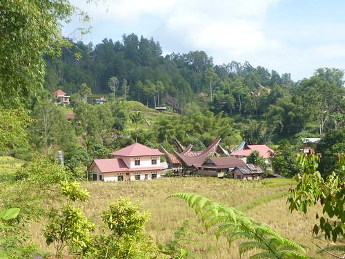 Sulawesi13-Palopo-Rantepao (31)