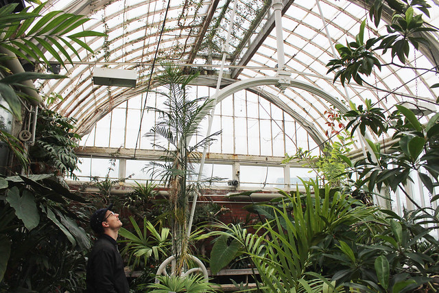 hejregina.blogspot.com palmhuset1