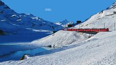 Bernina Express - Lago Bianco - Passo del Bernina