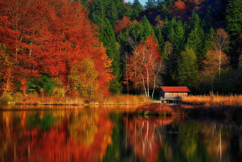 A Place To Rest | Autumn scenery at a lake in Upper ...