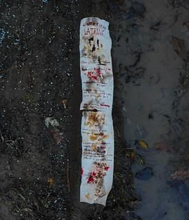 """Poem """"Latrine"""" by Günter Eich - written on used toilet paper. A soldier at the latrine trench. poem against glorifying war Eich`s Gedicht """"Latrine"""" auf benutztes Klopapier geschrieben. Gedicht gegen Verherrlichung von Krieg Hölderlin reimt sich auf Urin"""