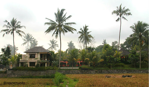 Villa Sabandari: boutique hotel overlooking Ubud's rice field