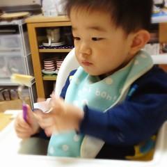 パンをスプーンにさして食べるとらちゃん(2012/4/21)