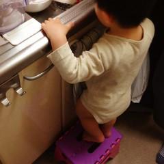 お皿洗いを観察するとらちゃん(2012/5/10)