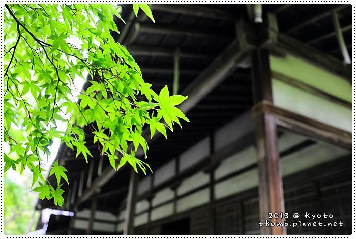 苔寺20130519-142239.jpg
