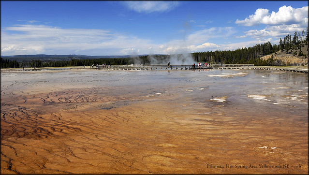 Prismatic Spring Area Yellowstone NP