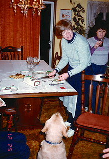 Indiana   -   Terre Haute   -   Christmas Night at the Tsuneta's    -   Liberty sees a Christmas Ice Cream Roll   -   December 1984
