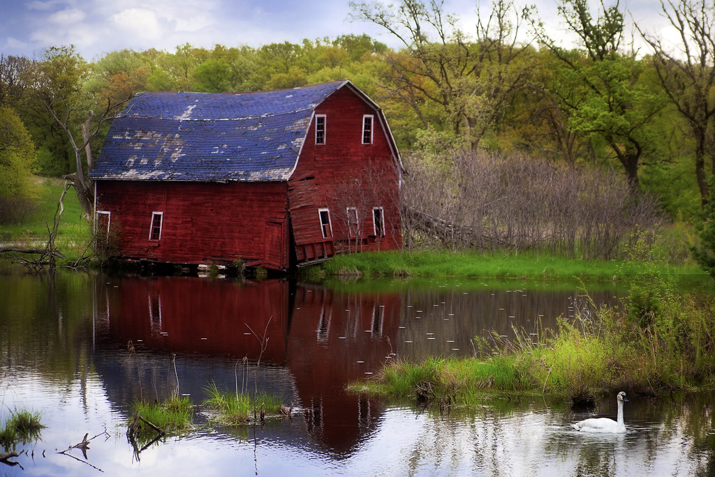 sinking barn near pond outside zimmerman, minnesota shown on minnpics.com, photos from minnesota and pictures of the northstar state