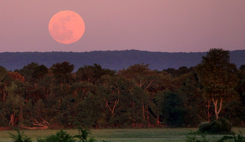 The Full Moon Rises over the Cumberland Plateau