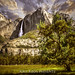 Yosemite through the Eyes of Kris Kros by Kris Kros