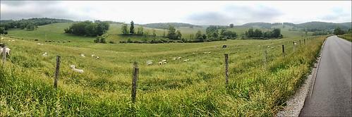 Pastoral View Floyd Co VA