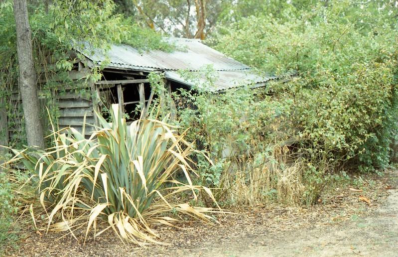 Heide Museum Garden - Melbourne
